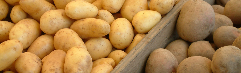 Bruwier Potatoes