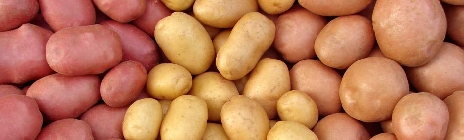 Bruwier Potatoes