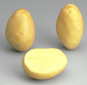 potato Monalisa