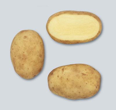potato Ramos